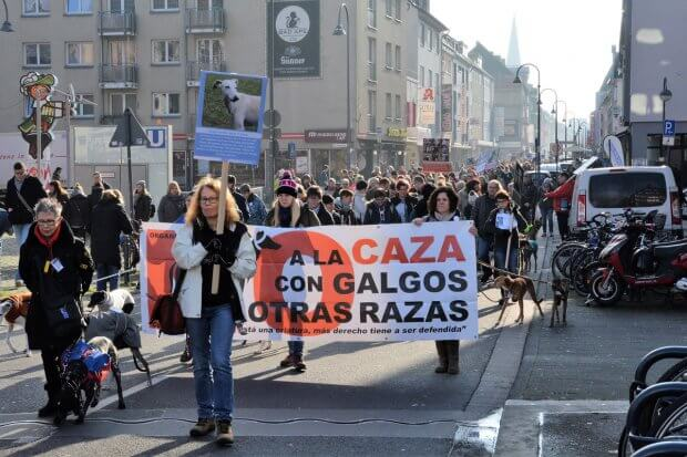 Galgo-Marsch 2018