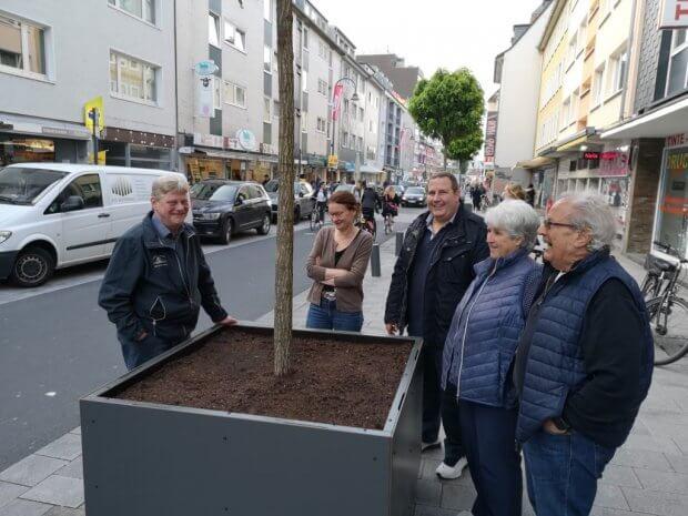 Bäume Severinstraße